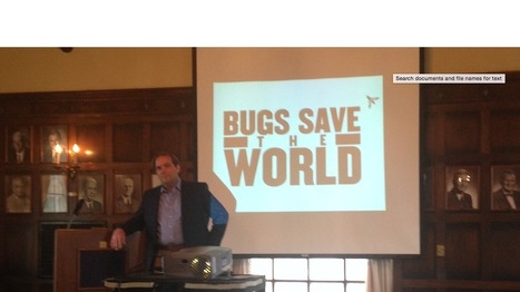 Yellow Springs biotech startup EnviroFlight celebrated - Dayton Business Journal | Protein Alternatives: Insects as Mini-Livestock - #InsectMeal | Scoop.it