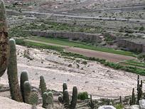 "ARGENTINA: Three-Quarters of ""Breadbasket"" Is Drylands | Geography | Scoop.it"