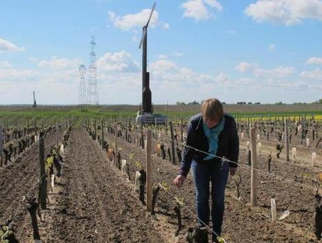 Les tours antigel veillent sur les vignes | Le Vin et + encore | Scoop.it