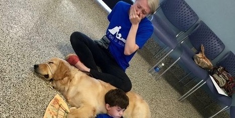 Autistic boy who can't be hugged finds first friend in service dog | eParenting and Parenting in the 21st Century | Scoop.it
