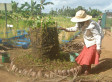 Investing In Women Farmers May Significantly Decrease World Hunger | Climate-Smart Africa | Scoop.it