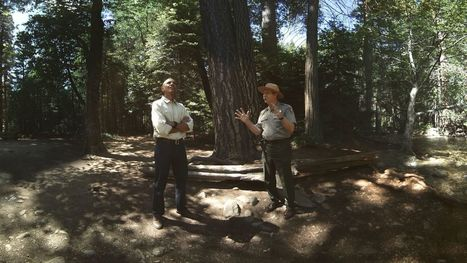 Watch President Obama tour Yosemite in his virtual reality debut   Vous avez dit Innovation ?   Scoop.it