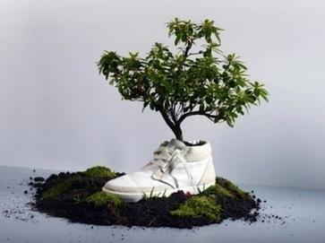 Ropa ecológica: Diseño e innovación de una tendencia en aumento | Diseño UNNOBA | Diseño de modas | Scoop.it