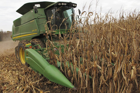 "Ethanol supporters ready to go to bat for biofuel | Are biofuels absolutely ""Bio"" ? 