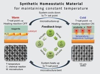 Smart materials get SMARTer — Self-powered nanomaterials self-regulate in response to environmental changes | Amazing Science | Scoop.it