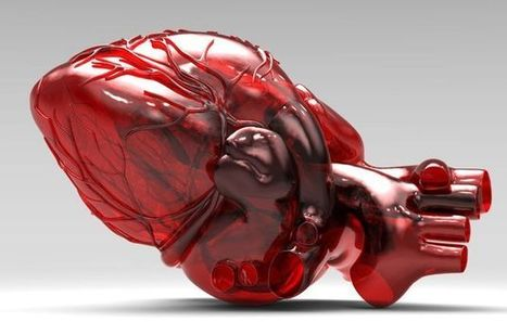 3D Printed Heart Saves a Child's Life - Technology News | History 2[+or less 3].0 | Scoop.it