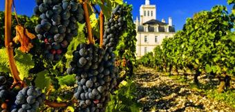 Grands Vins des Chateaux – A True Portuguese Story | Expat In ... | Inscription www.viavineo.com place de marche du vin | Scoop.it