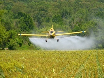 "Monsanto's toxic herbicide In Our Food Chain at ""Extreme Levels"" - Roundup (glyphosate) Hormone Inhibitor 