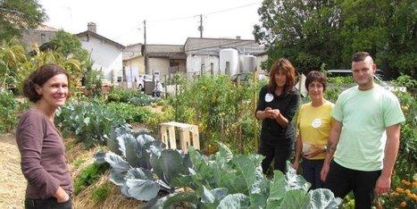 Les pots iront dans ce jardin partagé | (Culture)s (Urbaine)s | Scoop.it