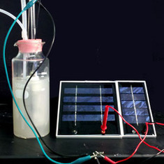 Fossil Free: Microbe Helps Convert Solar Power to Liquid Fuel: Scientific American | Future & Ecology | Scoop.it