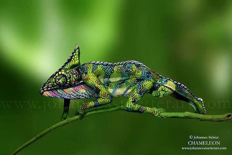 Incredible New Bodypainting of a Chameleon Consists of Two Women (Can You Spot Them?) | Images in 21st Century Communication | Scoop.it