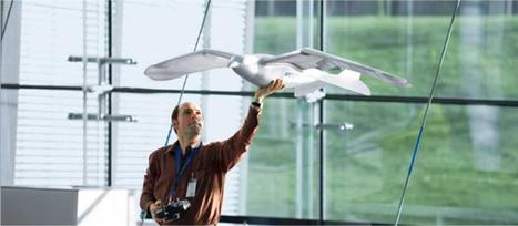 Robot oiseau 'SmartBird' by Festo | Bots and Drones | Scoop.it