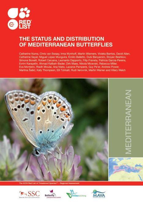 Rapport de l'UICN : Première évaluation de l'état de conservation des papillons en Méditerranée | Insect Archive | Scoop.it