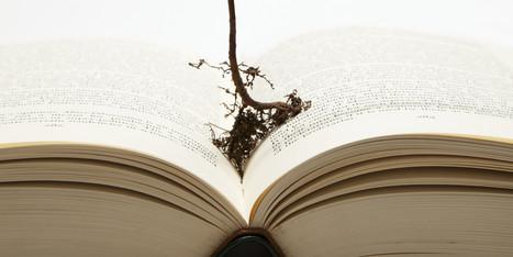 Wisdom, Technology and Education: Ideagen Talk by Dr. Kiko Suarez | TRENDS IN HIGHER EDUCATION | Scoop.it