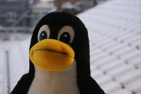 Las mejores distribuciones Linux 2014 | Software libre | Scoop.it