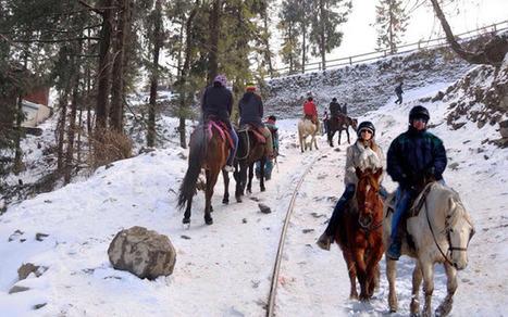 Best Adventure Activities in Shimla | ARV Holidays Pvt. Ltd. | Scoop.it