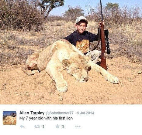 'One lion gets killed and everyone goes crazy' Father condemned for posting picture of 7-year-old son with dead lioness replies critics   Nairasafari   TOURISM CONTENT CURATOR   Scoop.it