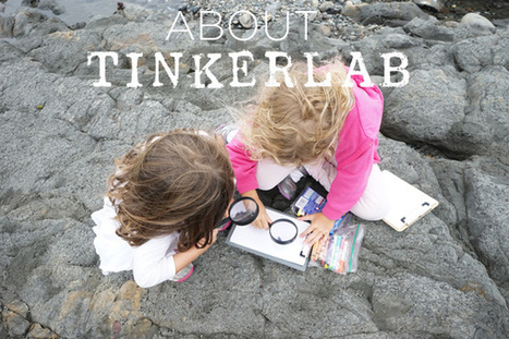 About - TinkerLab | Teacher-Librarianship | Scoop.it
