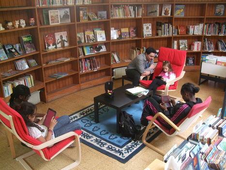 Bilan de l'offre numérique 2012-2013 | Blog de la Petite Bibliothèque Ronde | Du bon usage... ou du mauvais des bibliothèques numériques | Scoop.it