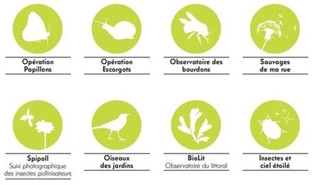 Natureparif - Publications et ressources en ligne   Autour de l'agroécologie...   Scoop.it