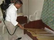 مكافحة النمل الأبيض العثة - الراقي لكل راقي | شركة تنظيف مجالس بالرياض | Scoop.it