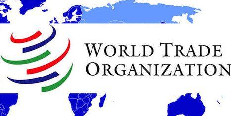 Antigua & Barbuda takes its WTO issue to the UN | Antigua Observer Newspaper | Pre-U Macroeconomics | Scoop.it