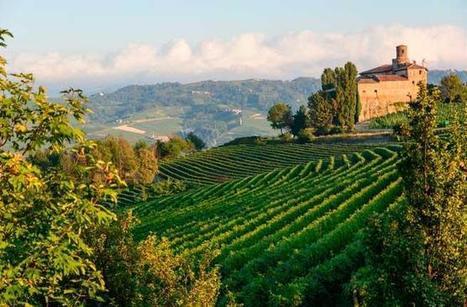 Best New UNESCO World Heritage Sites: vineyard landscape of Piedmont: Langhe-Roero and Monferrato | Italia Mia | Scoop.it