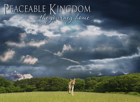 Peaceable Kingdom: The Journey Home, a New Documentary from Tribe of Heart, the Award-winning filmmakers of The Witness | Nature Animals humankind | Scoop.it