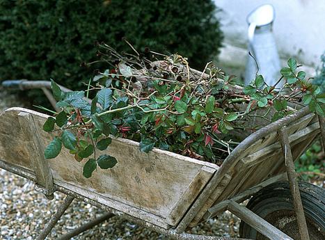 Récupérer les déchets de taille | jardins et développement durable | Scoop.it