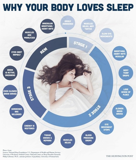 Your Body Does Incredible Things When You Aren't Awake | Learning | Scoop.it