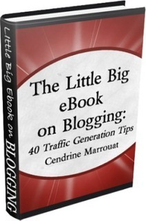 'The Little Big eBook on Blogging' gets another 5-star review on Amazon! | Business in a Social Media World | Scoop.it