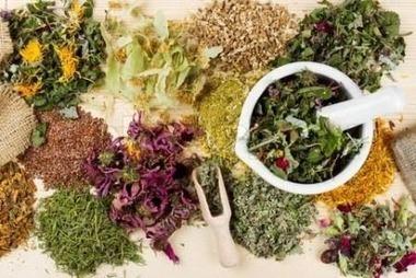 TU SALUD: 15 plantas medicinales que arruinarían las farmacéuticas | Qué sabemos de salud... | Scoop.it