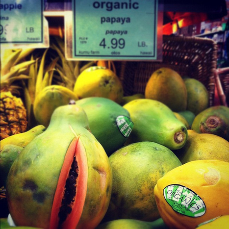 Why You Should Care About GMO Legislation | GMO Salmon | Scoop.it