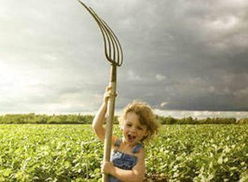 L'agriculture industrielle va disparaître | Un potager dans la ville | Scoop.it