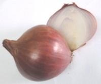 Agnel's Wellness Ashram — amcrasto: Onion: Health Benefits and Medical...   Ayurveda   Scoop.it