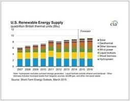 EIA reports illustrate bioenergy growth | Biomassmagazine.com | Salon Bois Energie du 12 au 22 mars 2015 à Nantes | Scoop.it