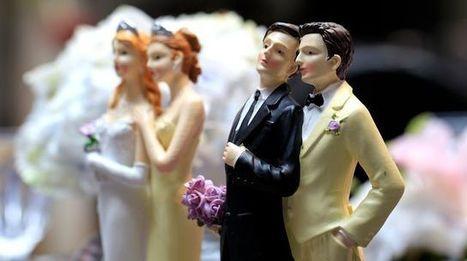 L'égalité des droits entre homos et hétéros soutenue par 56% de Français | Égalité | Scoop.it