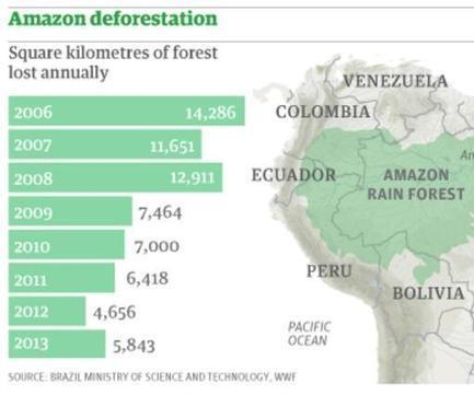 Amazon deforestation increases by nearly a third in a year | Environmental Science | Scoop.it