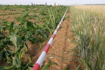 Inf'OGM - OGM: France – Arrêté d'interdiction du maïs transgénique MON810 adopté... pour la troisième fois depuis 2008 | Code Planète | Scoop.it