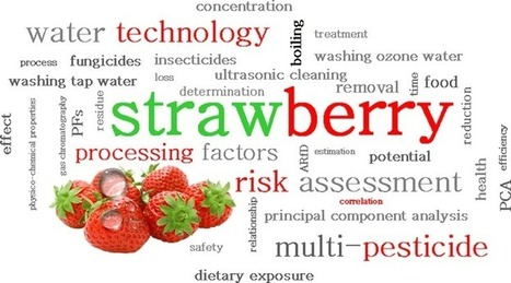 Removal of 16 pesticide residues from strawberries by washing with tap and ozone water, ultrasonic cleaning and boiling | A Tale of Two Medicines | Scoop.it