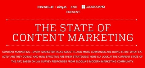 The state of content marketing 2014 [infographic] | Web Actuality | Scoop.it