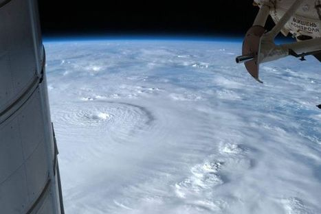 Damage count in Palau as Bopha hits Philippines - Australia Network News - ABC News (Australian Broadcasting Corporation)   Climate Chaos News   Scoop.it