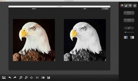 Color Splash Pro, retouchez les couleurs par des nuances de gris | SDFQSDFQS | Scoop.it