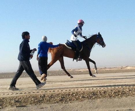Irish rider unseated in UAE desert endurance race | Fran Jurga: Equestrian Sport News | Scoop.it