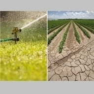 In Times of Drought: Nine Economic Facts about Water in the United States | Why Nature Matters | Scoop.it