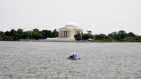 Sea Level Rising Toward Washington and Other Cities (+ Manila) - Adaptation or Retreat?   Water Stewardship   Scoop.it