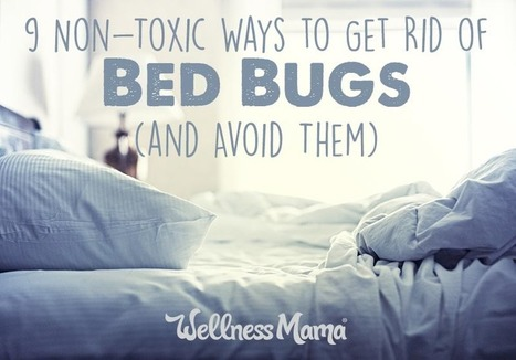 9 Non-Toxic Ways to Get Rid of Bed Bugs (& Avoid Them) Wellness Mama | ticks | Scoop.it