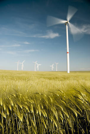 Energy Council backs post-2020 renewables policy but with no clear direction   The Great Transition   Scoop.it