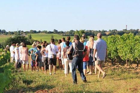 L'œnotourisme au cœur des côtes de Bordeaux | Le vin quotidien | Scoop.it