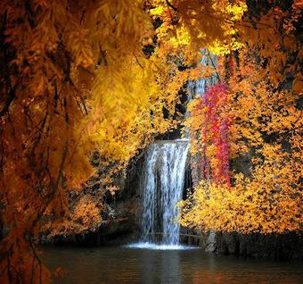 Most beautiful Waterfalls | Picworld : The Incredible Photo Gallery | beautiful pics | Scoop.it
